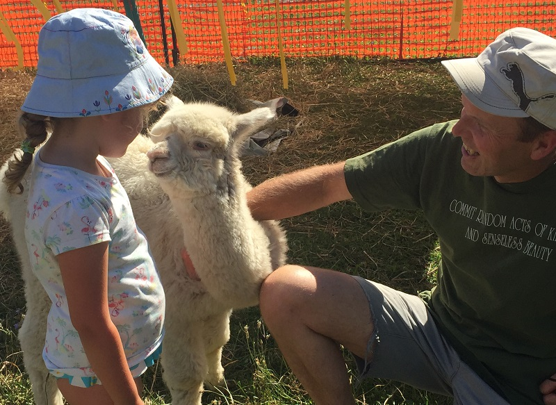 old farm to become the new llama sanctuary