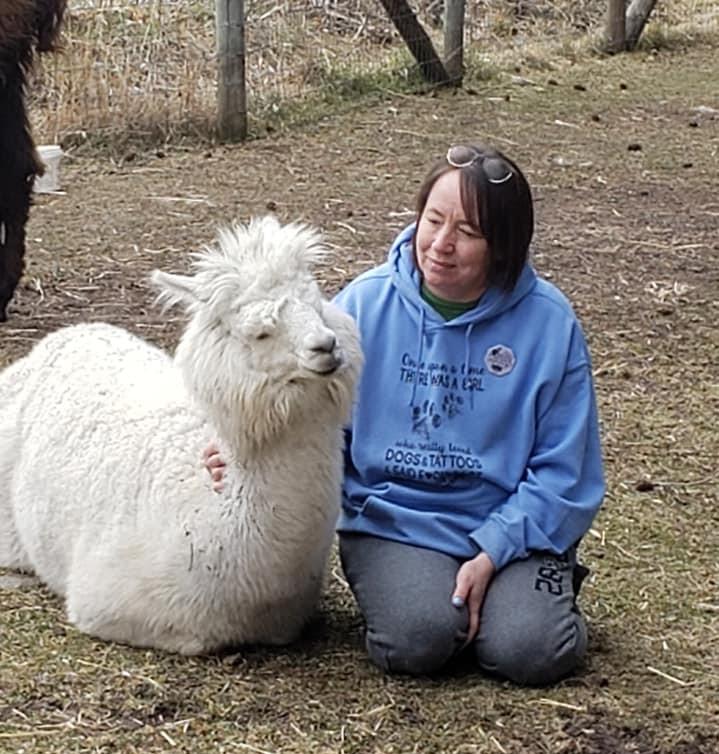 A sense of such peace amongst the llamas and alpacas