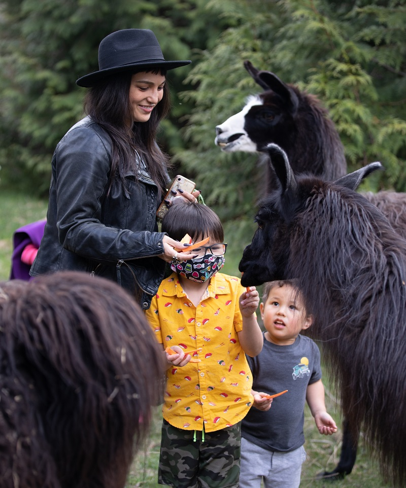 The Llama Sanctuary is for the whole family
